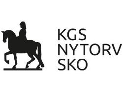 Kgs Nytorv Sko